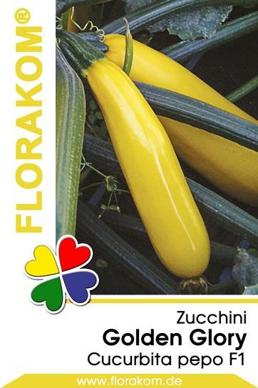 Zucchini Golden Glory
