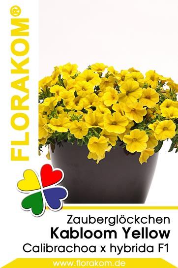 <hr>Zauberglöckchen Kabloom® Yellow <hr>Samen<hr>