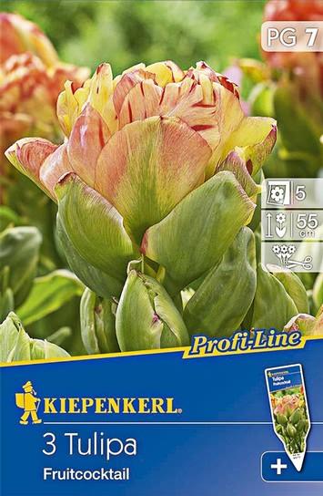 Tulpen Fruitcocktail