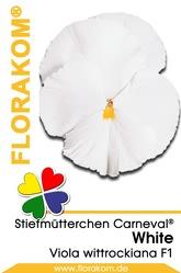 Stiefmütterchen Carneval® White