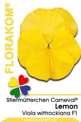Stiefmütterchen Carneval® Lemon