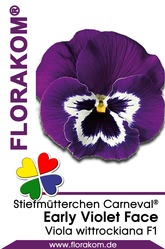 Stiefmütterchen Carneval® Early Violet Face