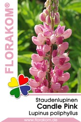 Lupinen Candle Pink