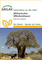 <hr>Afrikanischer Affenbrotbaum <hr>Samen<hr>