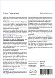 Sukkulente Echter Tigerrachen