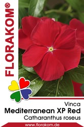 Vinca Mediterranean XP Red